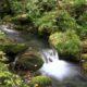 La gestion et les économies d'eau dans le Morbihan