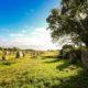Paysages de Mégalithes ouvre la page tourisme